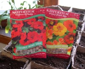 Nasturtium seed packets