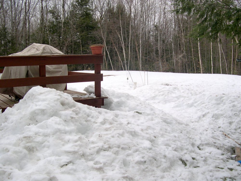 March 31st snow left in yard