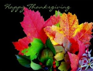 fall leaves and Happy Thanksgiving text