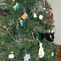 Our Living Christmas Ornament - Bad Kitty