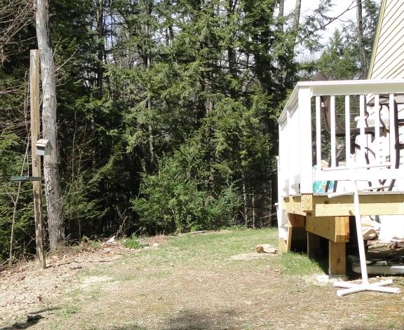 backyard deck and lawn
