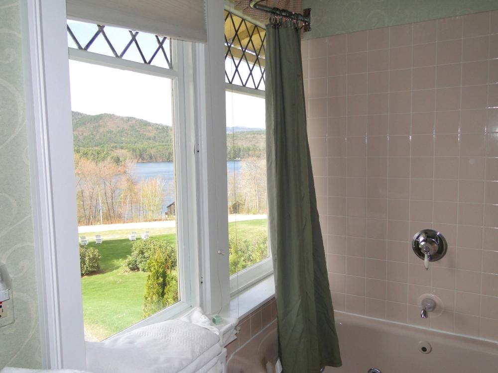 bathroom windows and view