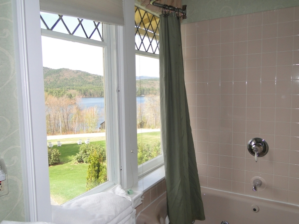bathroom windows and view