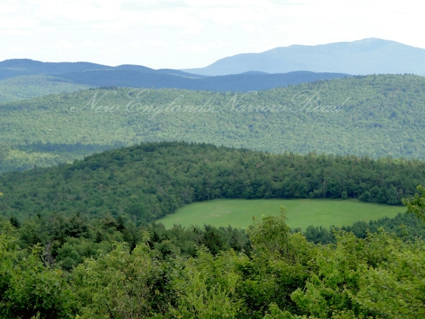 View from top of Pitcher Mountain