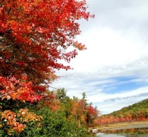 fall foliage season 2012