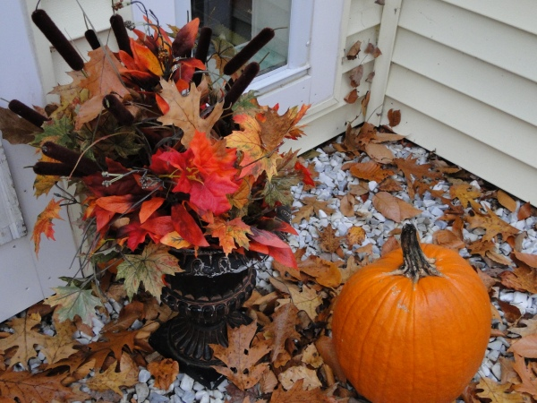 Fall leaves and pumpkin