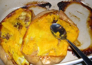 cooked squash