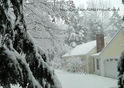 winter Christmas snow