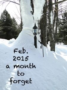 winter snow 2015