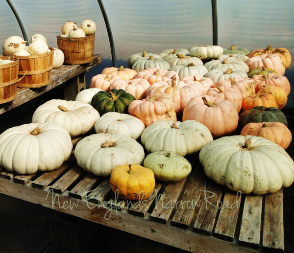 Fall Harvest at New Hampshire Farm Stand (4/5)