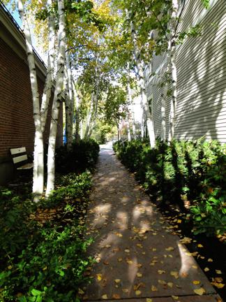 walkway to Grove St.
