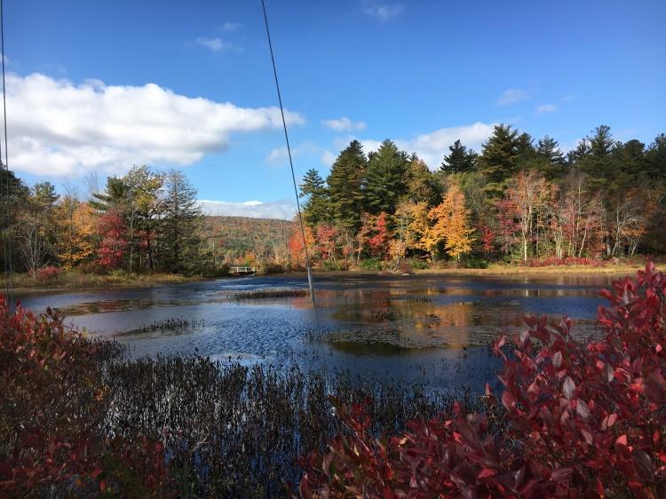 bridge by the lake in fall
