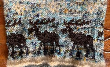 Moose hat