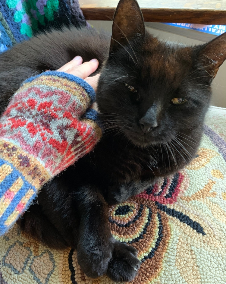 Patrón de manoplas de lana Fair Isle en lana acariciando gato